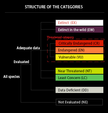 iucn_categories_chart